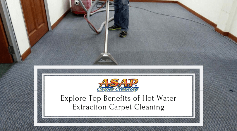 Explore Top Benefits of Hot Water Extraction Carpet Cleaning (1)
