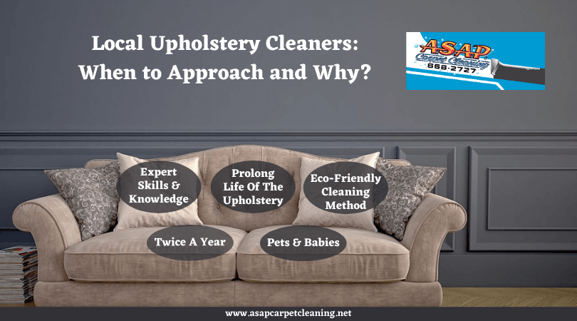 Local Upholstery Cleaners: When to Approach and Why?