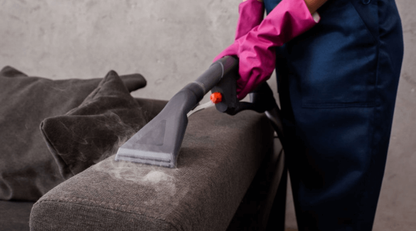 Local Upholstery Cleaners_ When to Approach and Why
