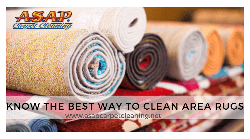 Know The Best Way to Clean Area Rugs