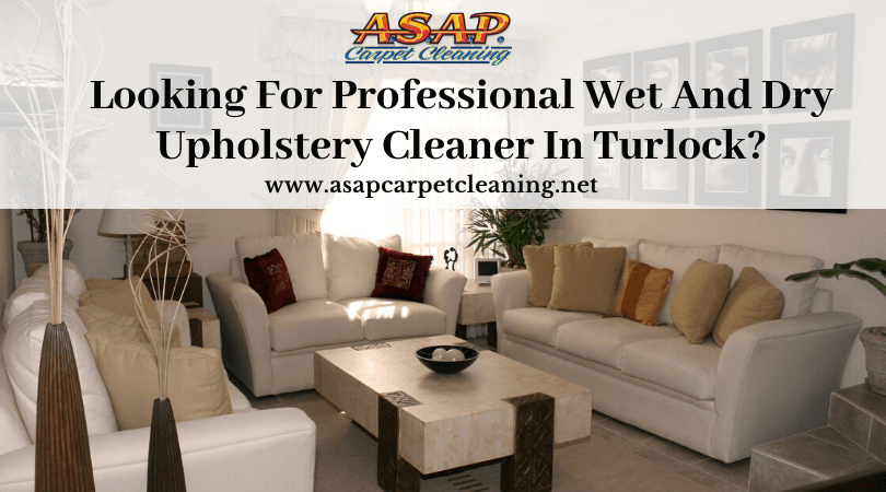 Professional Wet And Dry Upholstery Cleaner | Turlock CA
