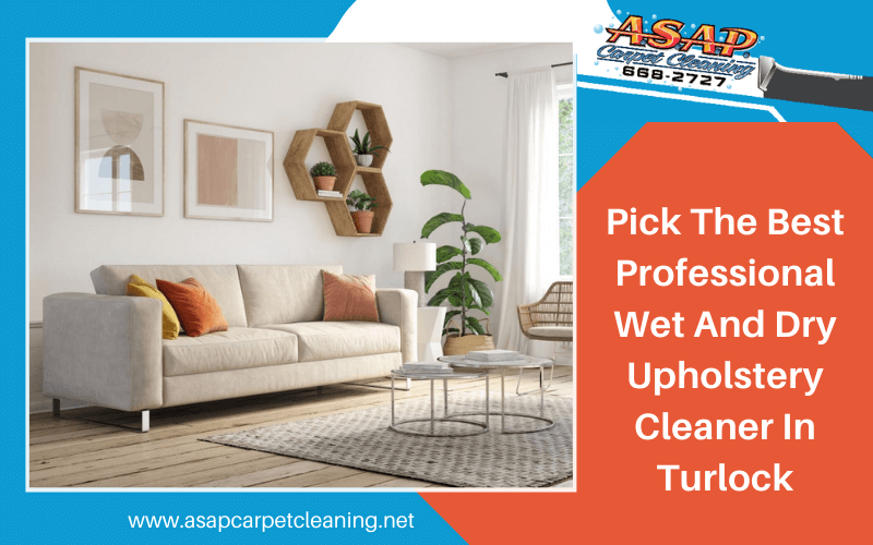 Pick The Best Professional Wet And Dry Upholstery Cleaner In Turlock