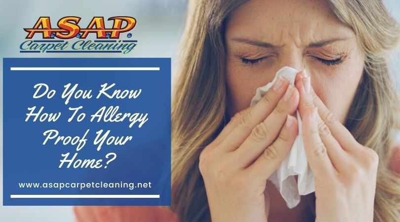 Do You Know How To Allergy Proof Your Home?
