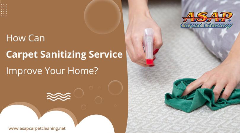 carpet sanitizing service