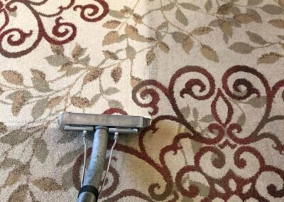 Area Rug Cleaning Turlock