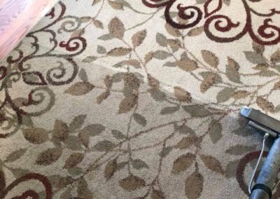 Area Rug Cleaning Services Turlock
