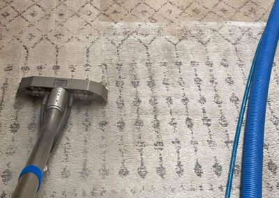 Professional Area Rug Cleaning Turlock