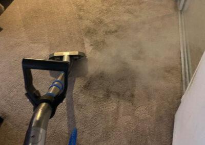 Professional Carpet Cleaning Turlock
