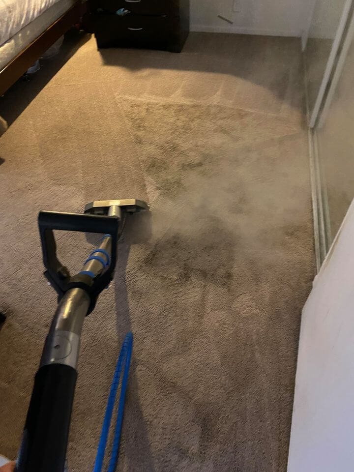 Professional Carpet Cleaning Turlock