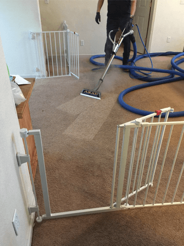 Carpet Cleaning Services Turlock