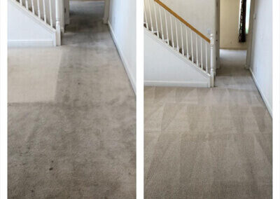 Five Star Carpet Cleaning Turlock